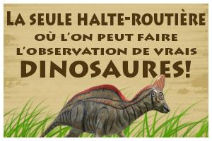 Faites l'observation de vrais dinosaures